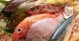 নতুন সামুদ্রিক মাছ 'বাংলাদেশিয়াস' বৈশ্বিক তালিকায় অন্তর্ভুক্ত